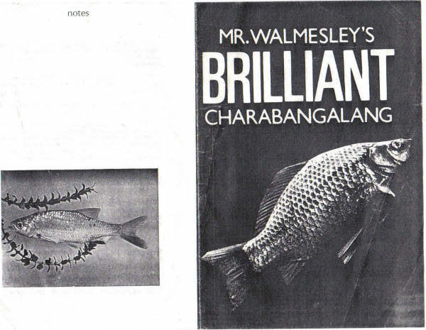 Mr Walmesley's Brilliant Charabangalang